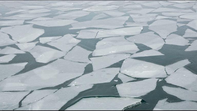 Nu ska Kung Ring ersättas av ett modernare isgående fartyg (arkivbild). Foto: TT