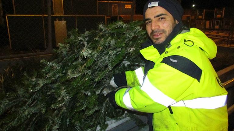Julgranen ska inte slängas i skogen eller läggas i komposten säger driftledare på Uppsala vatten Bestoon Gawher. Foto Sanna Karlsson/SR