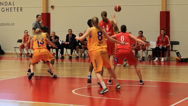 Arkivbild. Sallén basket i röda linnen. Foto: Karima Edell/Sveriges Radio