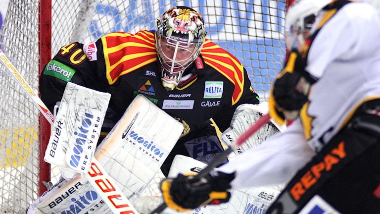 """Hockeymålvakten Johan """"Honken"""" Holmqvist får nu ta på sig Brynäströjan igen. Foto: Mats Åstrand/TT"""