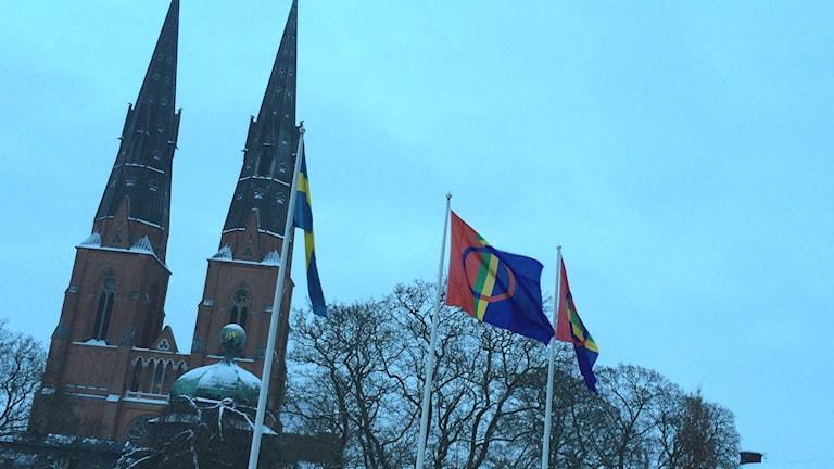 Samernas flagga vajar över Uppsala. Foto: Stefan Hesserud Persson / SR