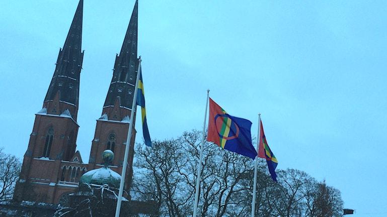 Samernas flagga vajar över Uppsala. Foto: Stefan Hesserud Persson/Sveriges Radio