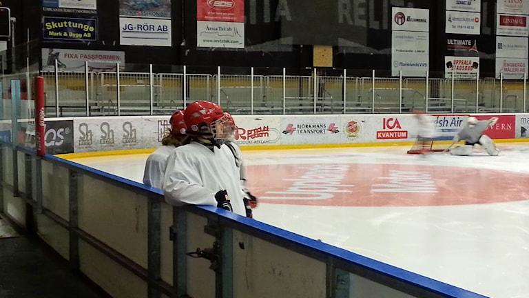 Almtunas hockeydamer. Foto: Per-Henrik Johansson/Sveriges Radio