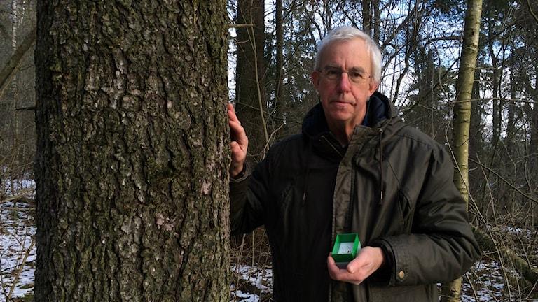 Fältentomologen Åke Lindelöw är expert på att hitta insekter i skogen trots att det är vinter.