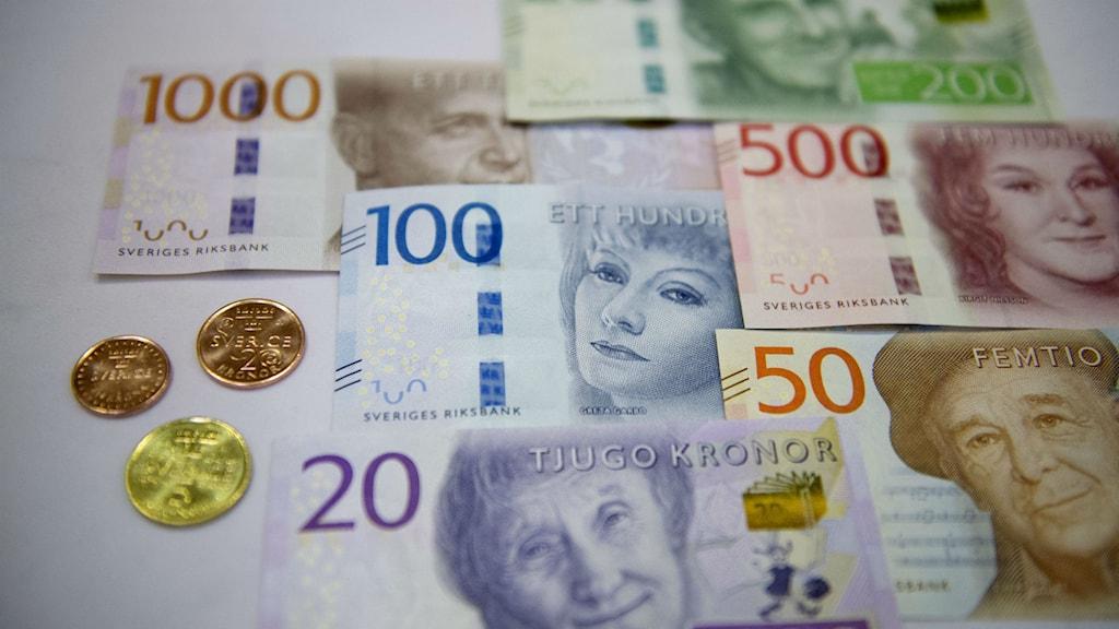 De nya sedlarna och mynten Foto: Jessica Gow/TT