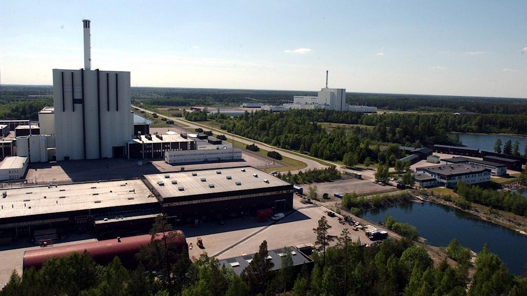 Forsmarks reaktorer. Foto: Jan Collsiöö/TT