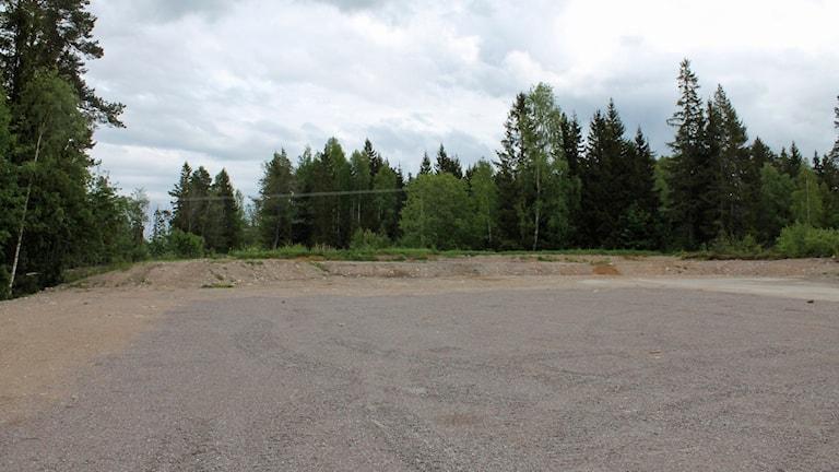Atommüll Schweden: Hier soll das Endlager entstehen (Foto: Kina Pohjanen/Sveriges Radio)