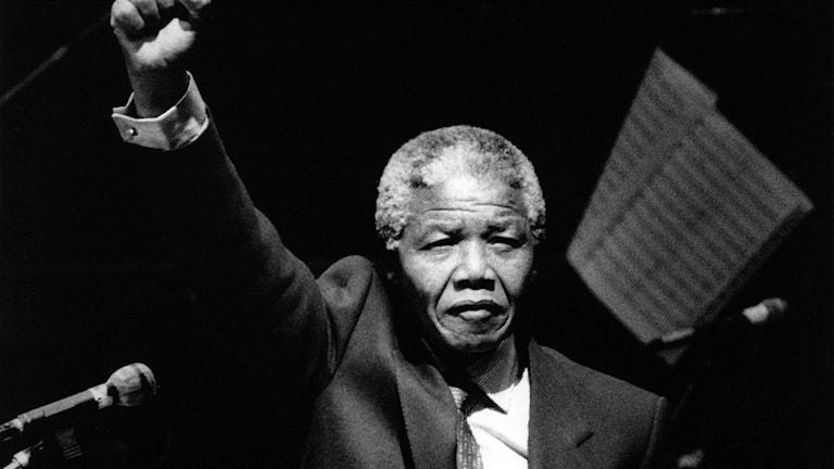 Nelson Mandela mars 1990. Foto: Jack Mikrut/TT