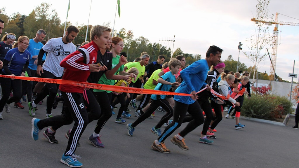 Startskottet för loppet 2014. Foto: Stefan Hesserud Persson/Sveriges Radio