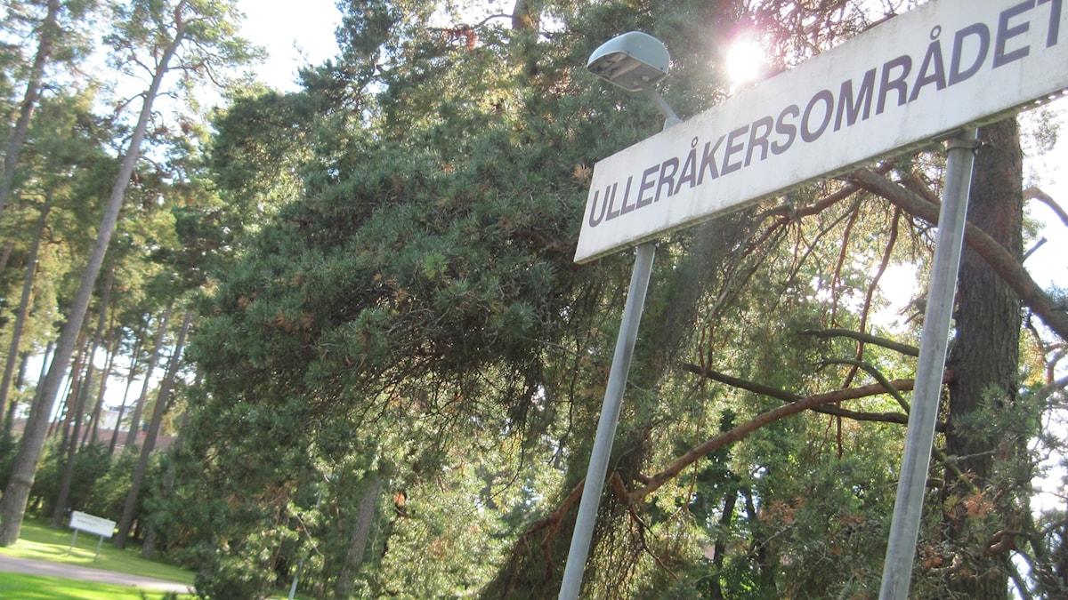 Ulleråker. Foto Mårten Nilsson/Sveriges Radio