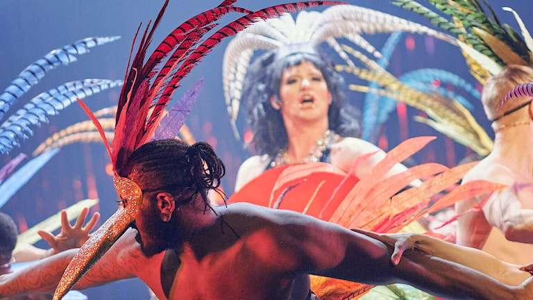 Ur musikalen La Cage aux folles. Foto: Stadsteaterns pressbild