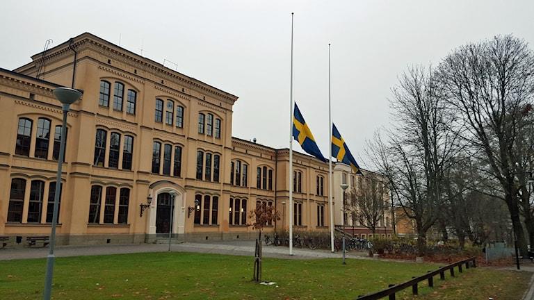 Flagga på halv stång vid Katedralskolan i Uppsala, för terrordådens offer i Paris. Foto: Mattias Persson/Sveriges Radio