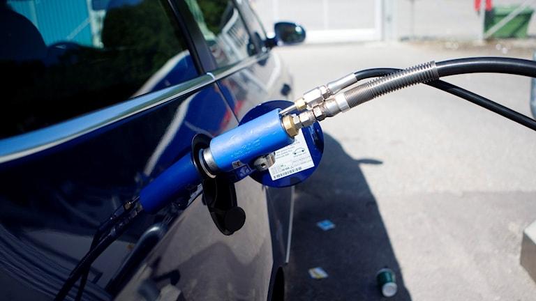 Bil tankas med biogas. Foto: Andreas Apell/TT