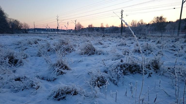 Järnväg i bakrunden i Knivsta. Foto Patrik Karlsson Nilsson