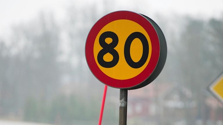 80-skylt. Foto: Fredrik Sandberg/TT