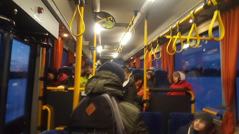 Bussen mellan Björklinge och Örbyhus. Foto: Mattias Persson/Sveriges Radio