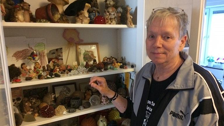 Iréne Andersson har samlat på igelkottar sedan slutet av 1970-talet.