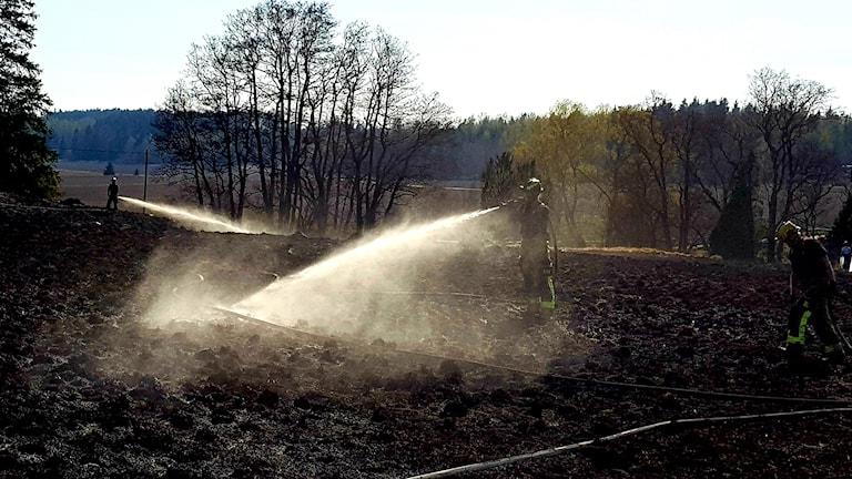 Eftersläckning efter gräsbranden i Skogstibble.