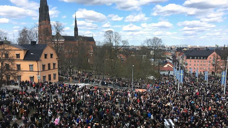 Carolinabacken i Uppsala 2017.