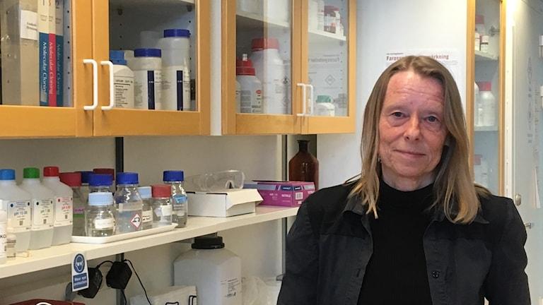 Siv Andersson, vice direktör för Science for life laboratory i Uppsala.