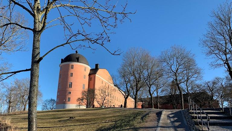 Uppsala slott syns i solsken mellan några träd.