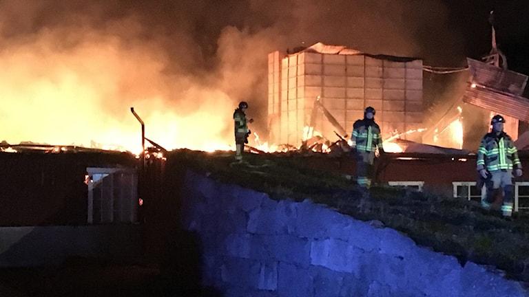 Stort hönseri brann ner i Biskopskulla.