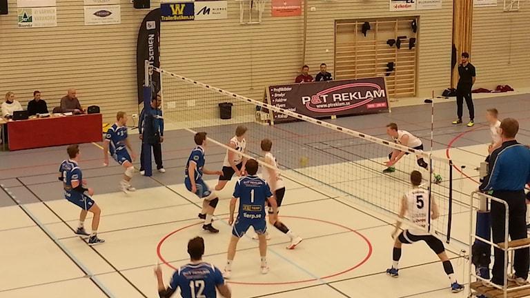 Tierp Volley hamnade i tidiga underlägen i seten och orkade inte resa sig.