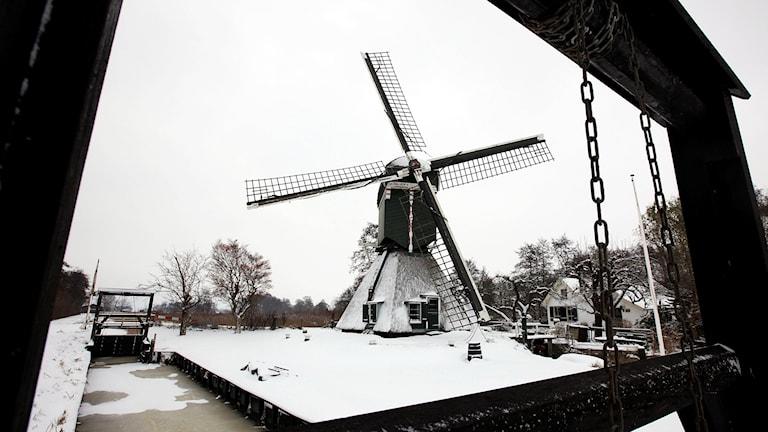 Kvarn utanför Utrecht