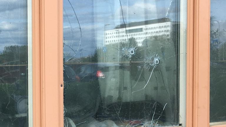 Skotthål i fönster efter skjutningen i natt i stadsdelen Löten i Uppsala.