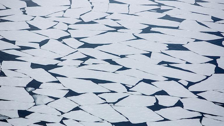 Smältande polarisar kan ge mindre nederbörd