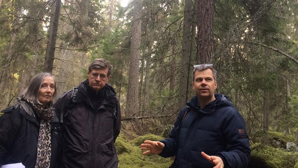 Margareta Ericsson, Patrick Fritzson och Håkan Aronsson i Adolfsbergsskogen.