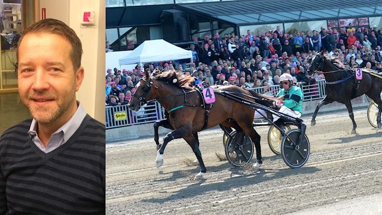 Anders Malmrot, ny sportchef på Solvalla.