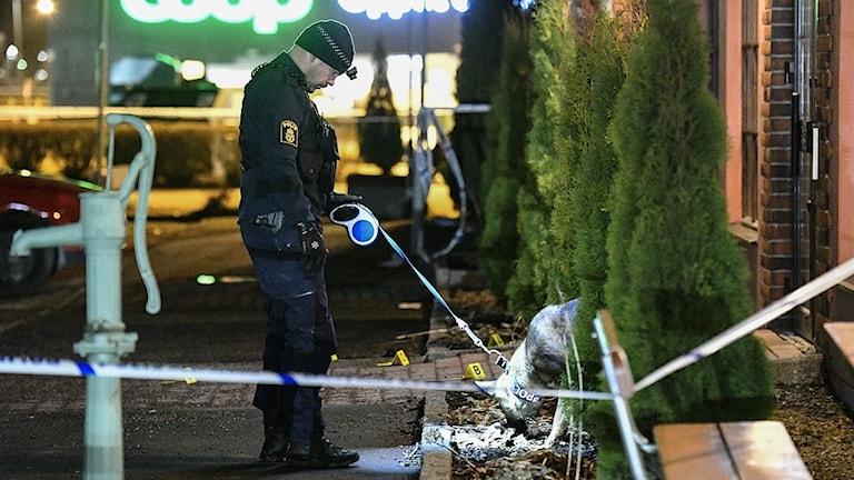 Polis med hund undersöker den plats utanför en restaurang i handelsområdet Boländerna i Uppsala där en skottlossning ägde rum under lördagkvällen. En man i 40-årsåldern dödades i skjutningen. Foto: Johan Nilsson/TT