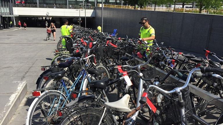 Cyklar vid centralstationen