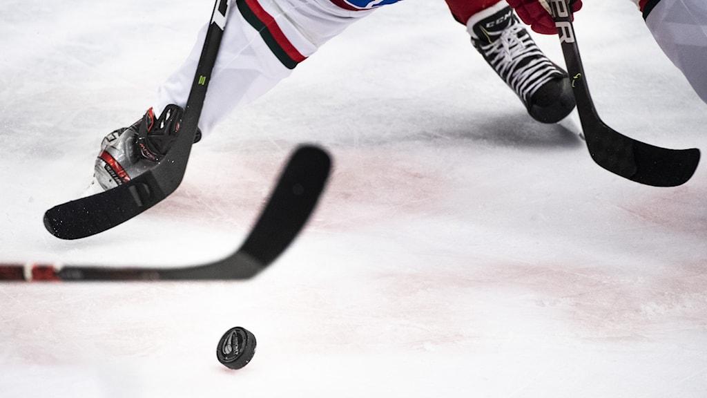 Skridskoklädd fot och två ishockeyklubbor