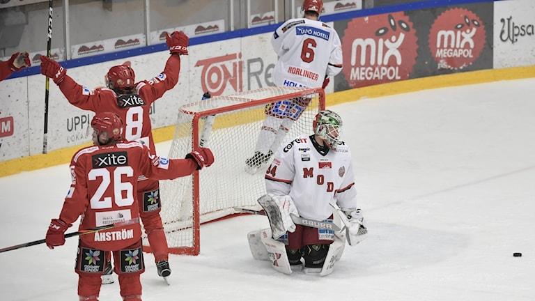Almtunajubel efter att William Wiå (8) gjort 2-0 på Modomålvakten Erik Hanses under tisdagens ishockeymatch i Hockeyallsvenskan mellan Almtuna och Modo i Gränbyhallen. Foto Pontus Lundahl / TT