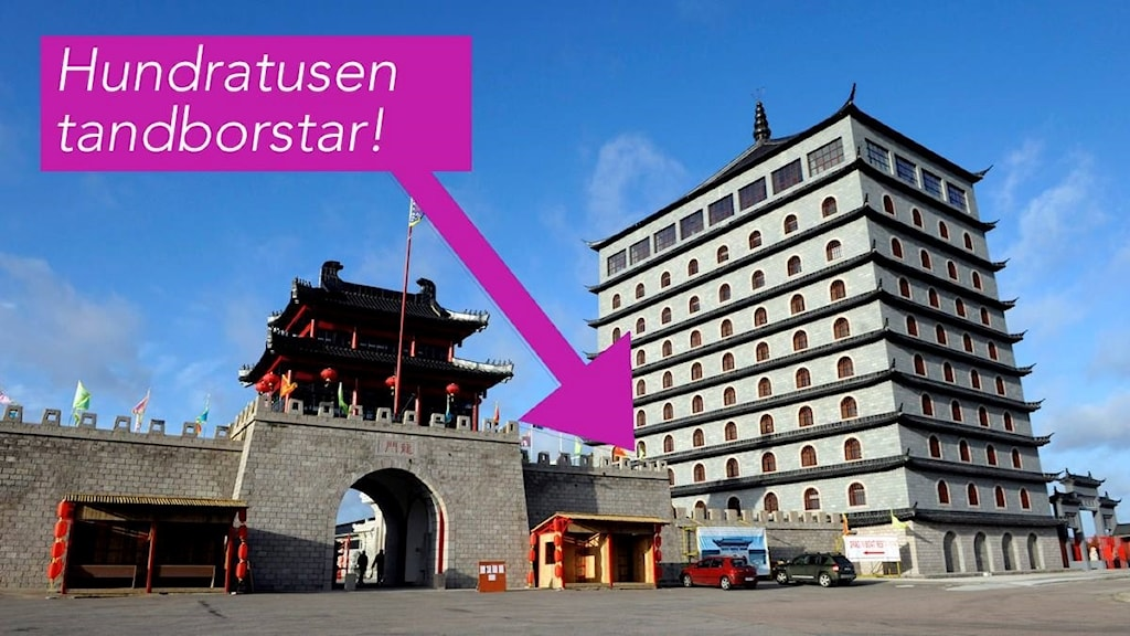 Dragon Gate i Älvkarleby kommun.
