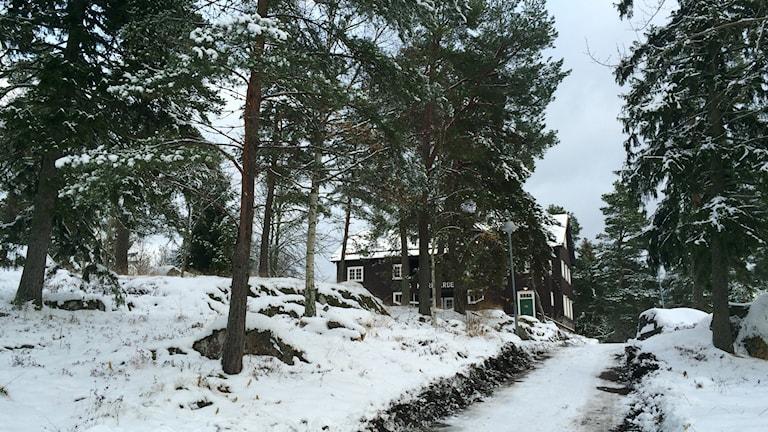 Gammelhusområdet östhammar foto Ulla de Verdier/SR