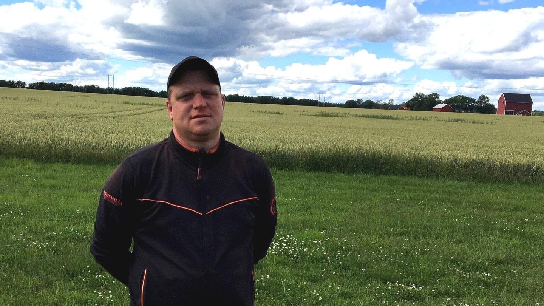 Lantmännen tror på en normalstor skörd i västra Sverige