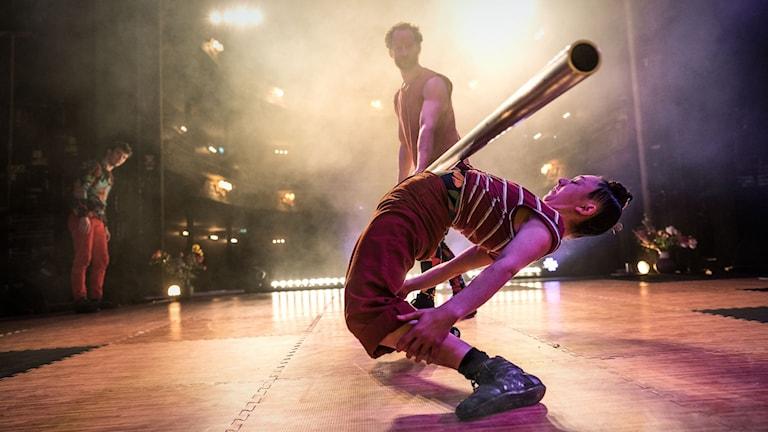 Ur föreställningen Bloom med Cirkus Cirkör