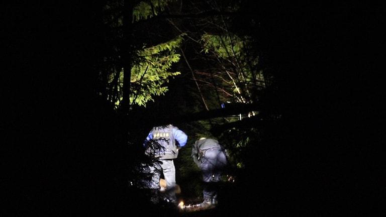 Polisen söker igenom skogen där mannen sköts.