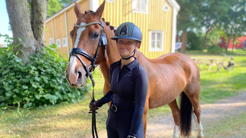 Moa Elofsson med hästen waterloo