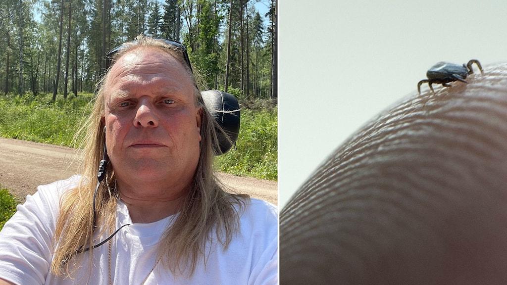 Till vänster en porträttbild på man som sitter i en rullstol utomhus. Till höger en närbild på en fästing som kryper på ett finger.
