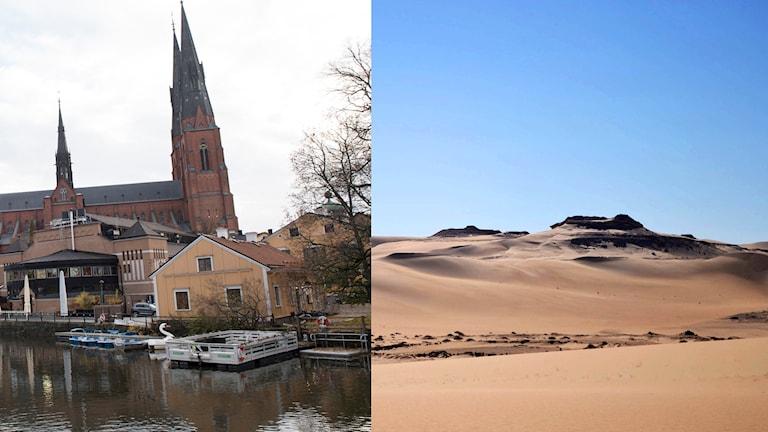 Uppsala domkyrka och Sahara.