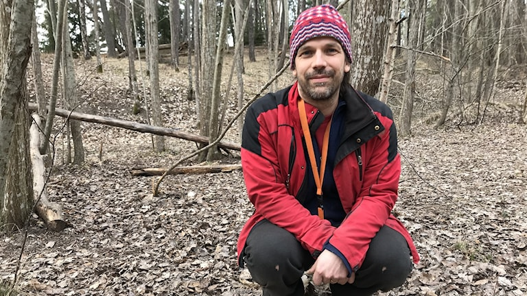 Henrik Thurfjell sitter på huk i en skog där marken är täckt av löv.