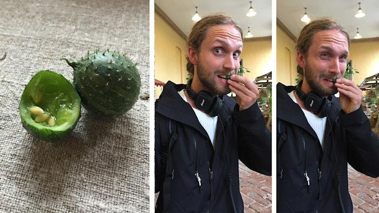 Gurkväxten krusbärsgurka och Eftermiddagens programledare Niklas Clarkson.