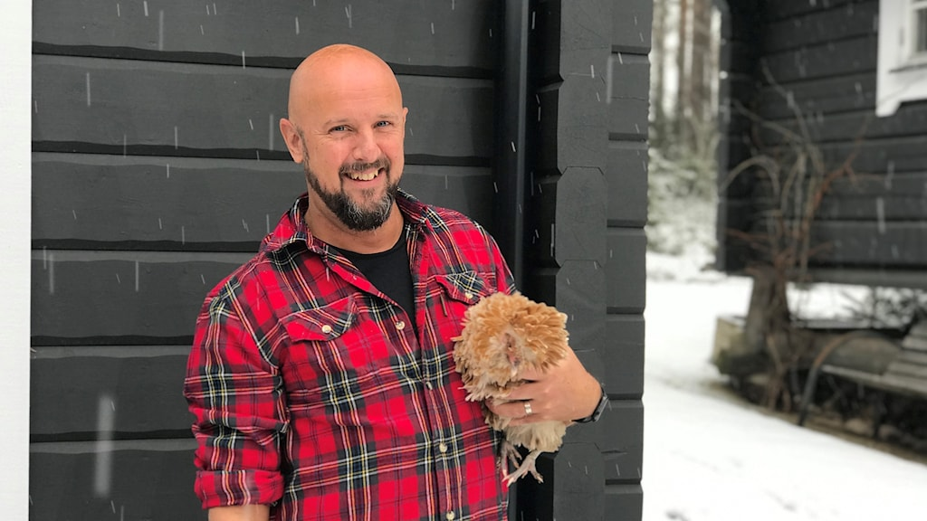 Peter Boström skrev låten Euphoria till Loreen. På bilden står han med en av sina hönor mot husets svarta fasad. Han har en rödrutig skjorta på sig och har lyft upp hönan i famnen. Hönan bajsade senare på skjortan som han blev tvungen att byta.
