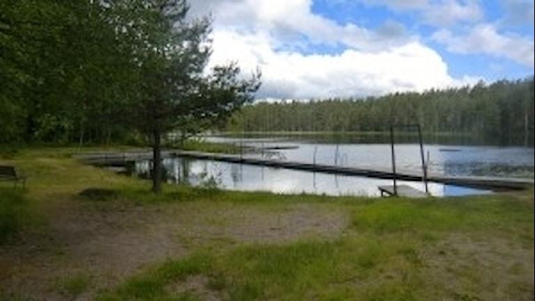 Laksjön i Harbo, Heby kommun.