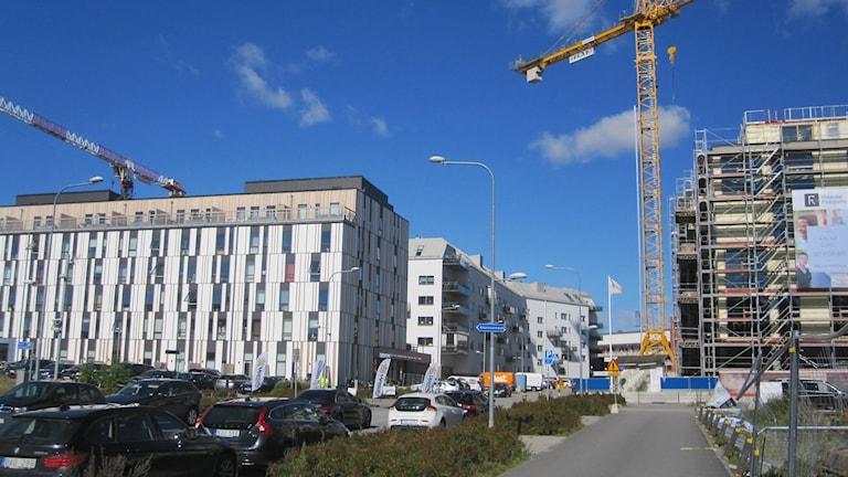 Här byggs nya stadsdelen Rosendal.