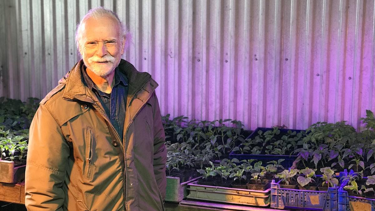 Anders Berlin står framför sina många förodlade grödor på sin gård i Björklinge